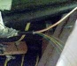 DSC00140_thumb.jpg