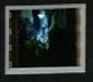 light-pic-3_thumb.jpg