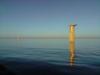 _turbines.JPG